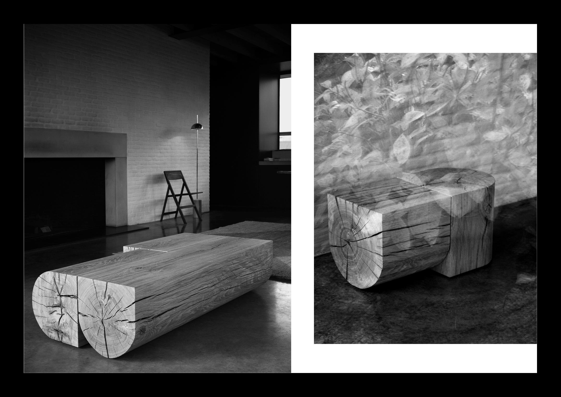 nicoletta-dalfino-van-rossum-x-case-design-imagery.png